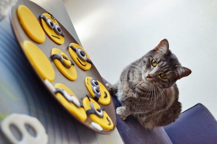 Recette Minions, le chat s'y met